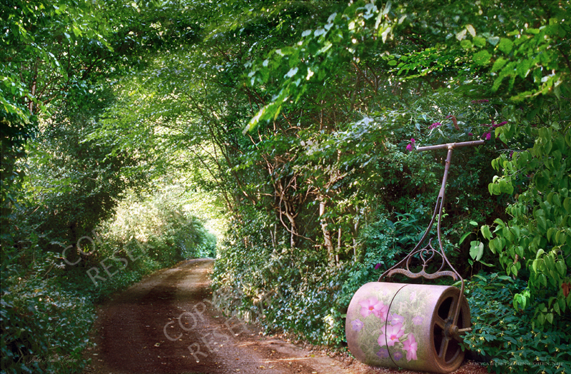 Garden roller, Country Lane, Flowers, Flora, Trees, Limited edition prints, John Neville Cohen